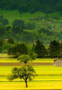 El mundo rural en FIMA